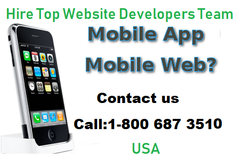 Hire Top Website Developers Team